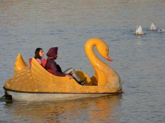 Sukuna-Lake-Chandigarh