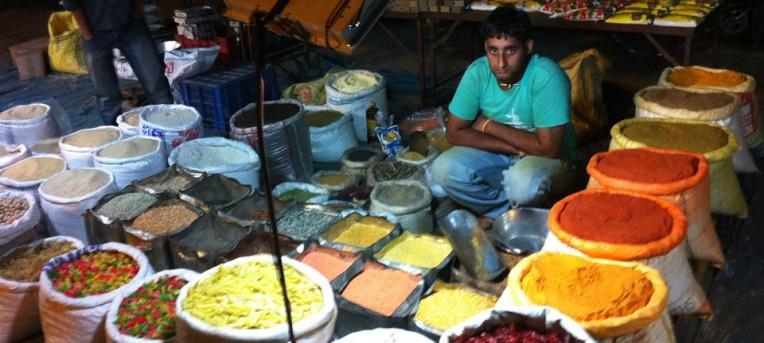 Comida indiana, pimenta e massala