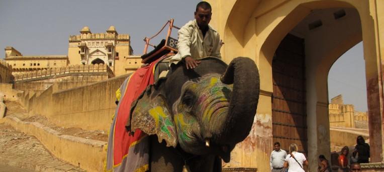 Jaipur, a cidade rosa do Rajastão