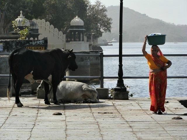 Mulher em Udaipur, Índia