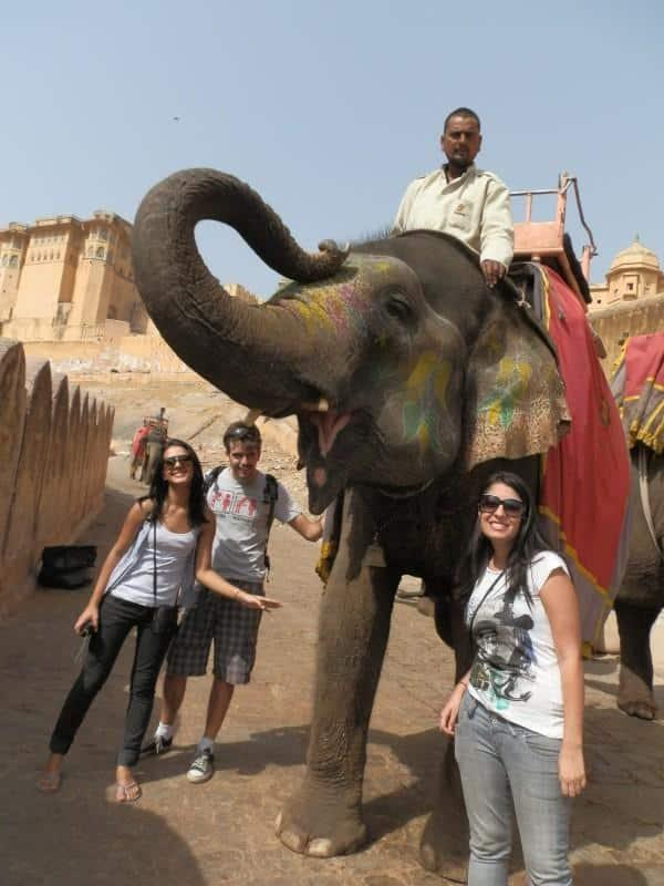 Elefantes do Rajastão, na Índia