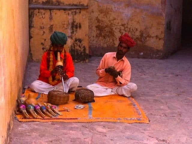 encantadores de serperte na india