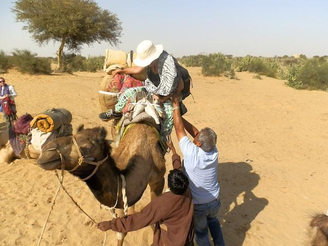 Safari de Camelo - Deserto de Thar
