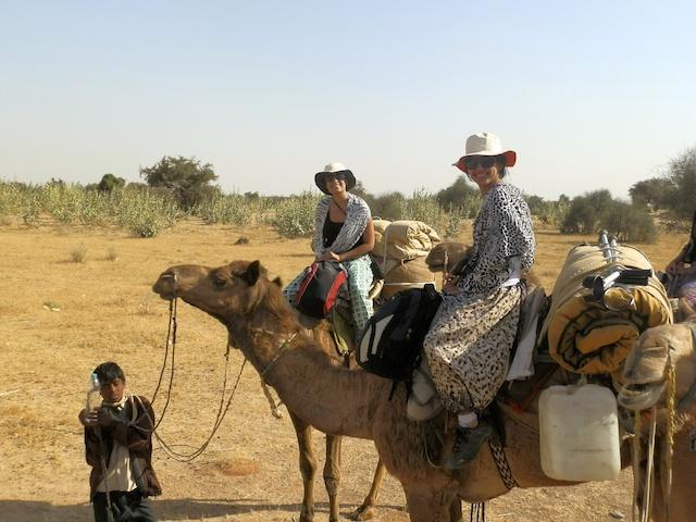 Safari de Camelo em Jaisalmer