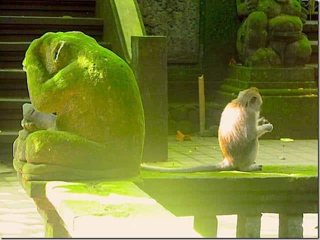 Floresta-dos-Macacos-Ubud