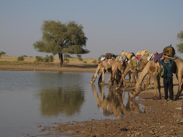 Jaisalmer, Índia