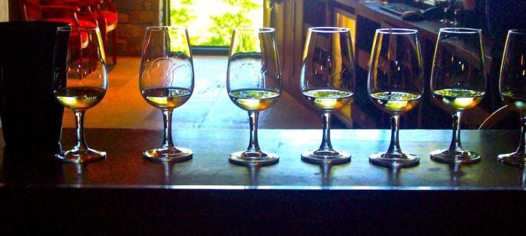 África do Sul: as vinícolas de Cape Town