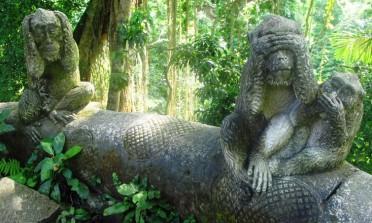 Ásia: o planeta dos macacos