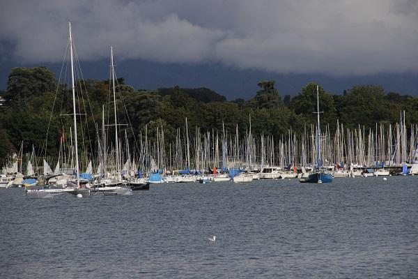 Passeio de barco por Genebra