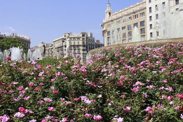 plaça da catalunya, Barcelona