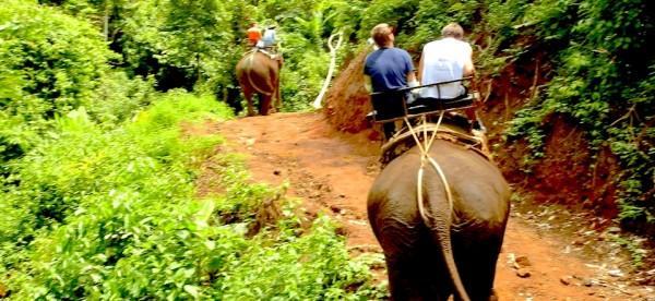 Passeio de Elefante na Tailândia