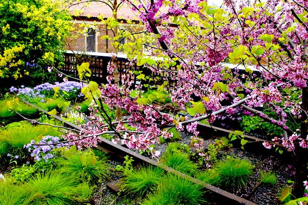 High Line Nova York