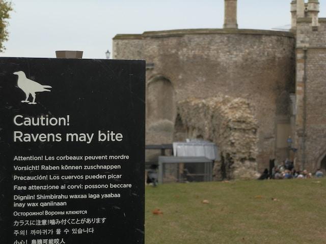 Torre-de-Londres-placa-corvos