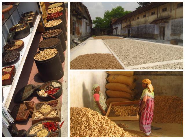 Mercado de Especiarias Fort Cochim