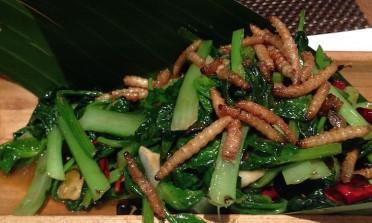 As pessoas realmente comem insetos na Tailândia?