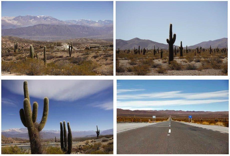 Cachi e o Parque Nacional los Cardones Argentina