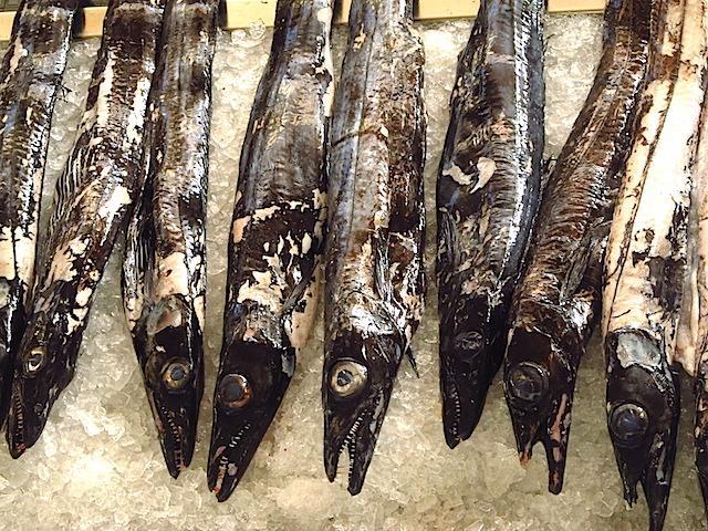 ilha da madeira peixe espada preto