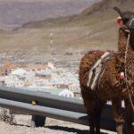 Dicas de viagem para Salta e Jujuy, Argentina