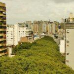 Gonçalo de Carvalho, a rua mais bonita do mundo