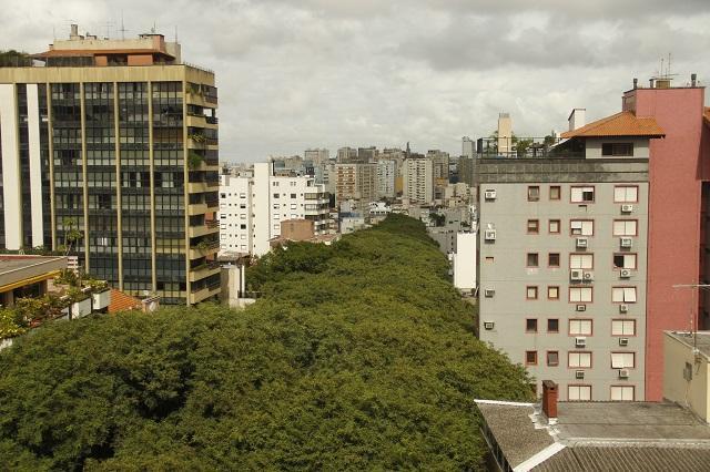 Rua Gonçalo de Carvalho vista