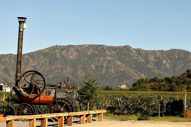 Passeio pelas vinícolas do Valle do Colchagua, no Chile