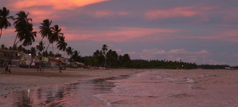 O que fazer em Maragogi, Alagoas