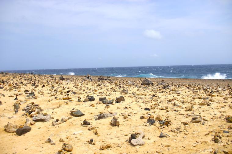 Jardim dos desejos, Aruba