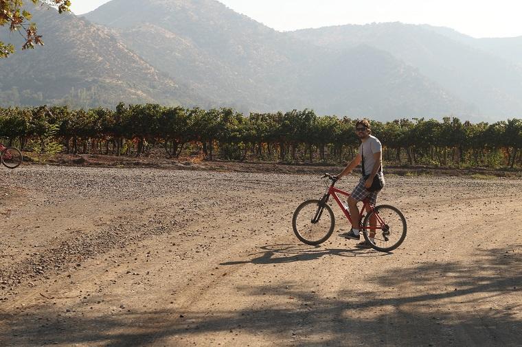 passeio de bicicleta na Vinícola santa Rita, Chile
