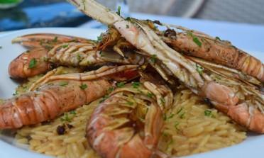 Os principais pratos da comida Grega