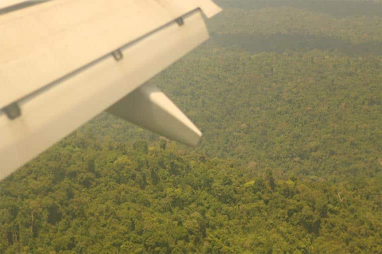 amazônia, Pará