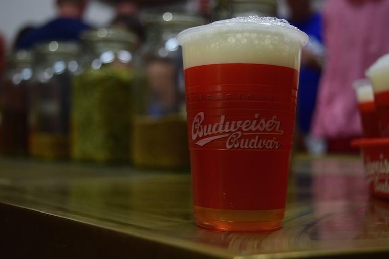 Budweiser budvar cerveja tcheca