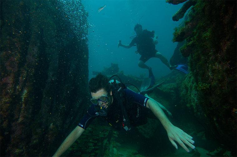mergulhar em Noronha