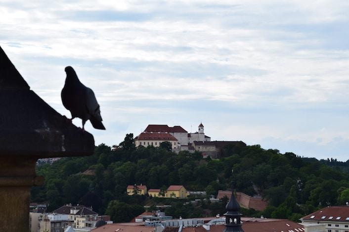república tcheca turismo brno