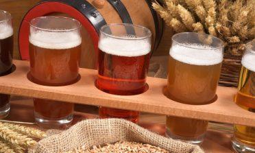 Guia para os diferentes tipos de cerveja