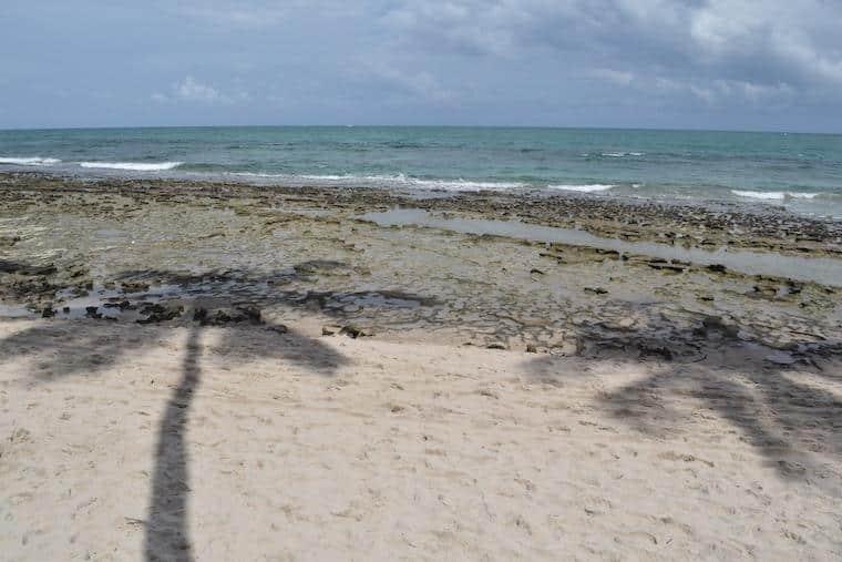 praia de caneiros piscinas naturais