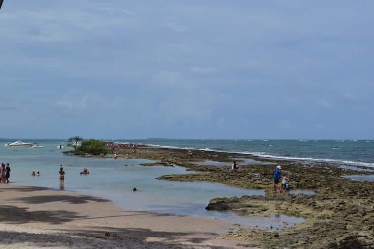 praia dos carneiros piscinas naturais