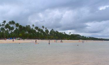 Guia de praias de Pernambuco: avaliação do litoral sul + Recife