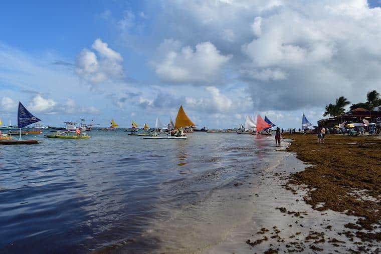 praias de pernambuco brasil jangadas porto de galinhas