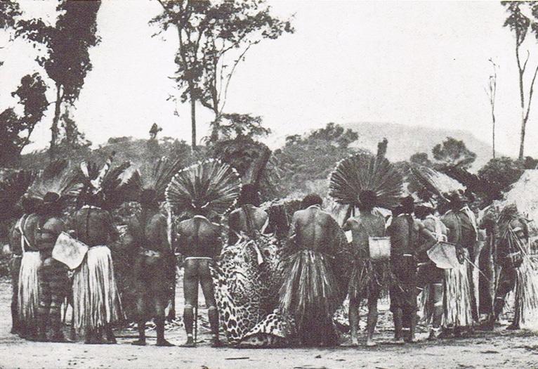 Tristes Trópicos - Resenha