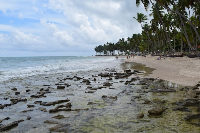 carneiros praia tabua das marés alta