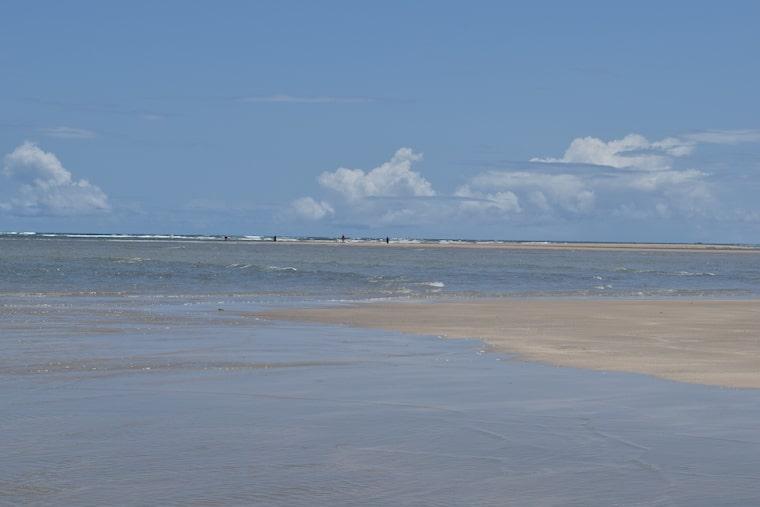 tabua das mares maracaípe pernambuco