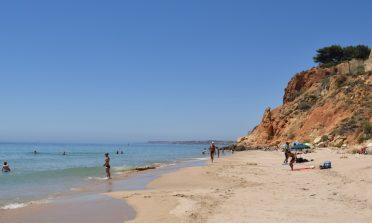 Sobre topless na praia e liberdade