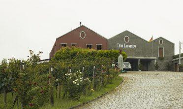Roteiro pelas vinícolas do Vale dos Vinhedos