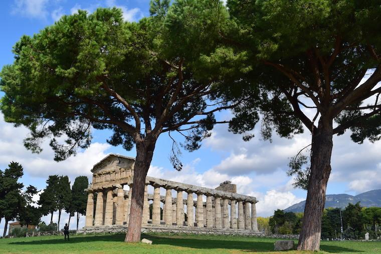 paestum italia templo e arvores