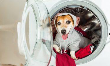 Sobre desapego e lavanderias self-service