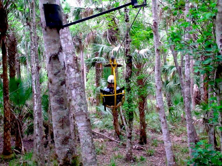 Forever Florida - Tirolesa no topo das árvores