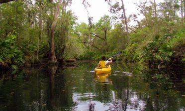 Natureza, aventura e kayaking perto de Orlando