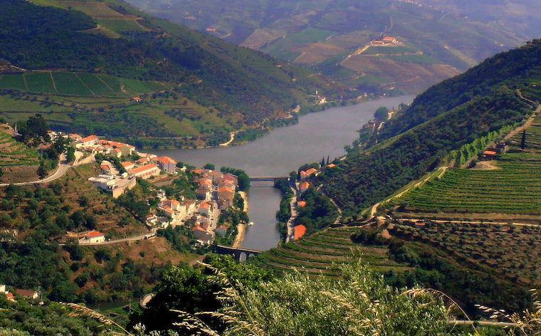 Alto_Douro_vinhateiro_portugal