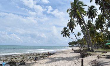 Praia dos Carneiros: o que fazer, como chegar e onde ficar