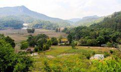 O projeto que transformou os campos de ópio em fazendas orgânicas na Tailândia